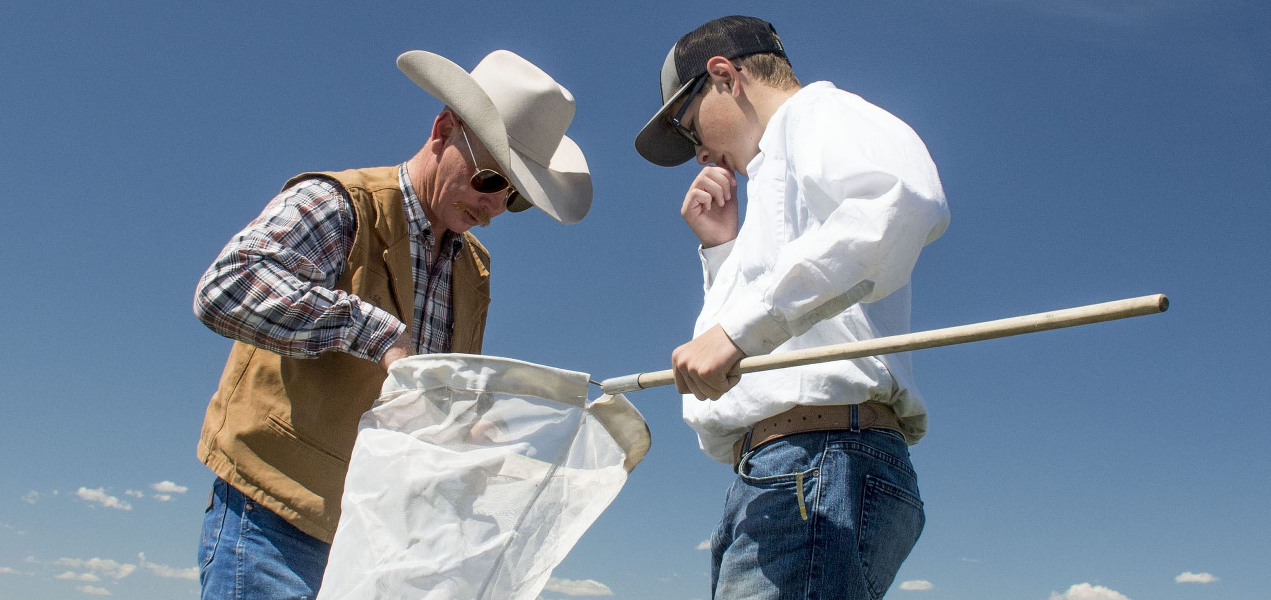 Father and son look into sweep net