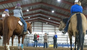 Thirty  participate in Ranch Riding Clinic