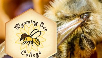 Annual Wyoming Bee College March 20-22 in Cheyenne