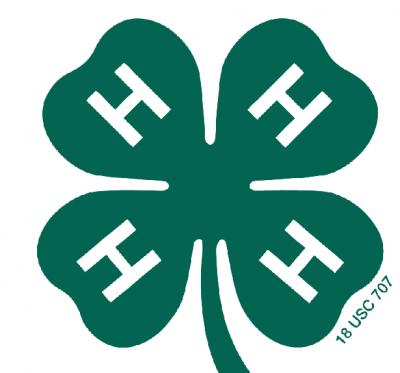 4-H four clover