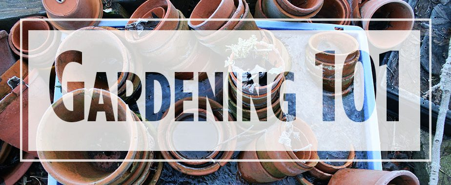"Text ""Gardening 101"" over image of stacked terra cotta pots"