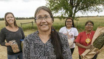 Ancestral food gathering group's efforts document Shoshone foods, preparation
