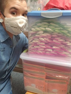 Individual with mask on next to tubes of mixes