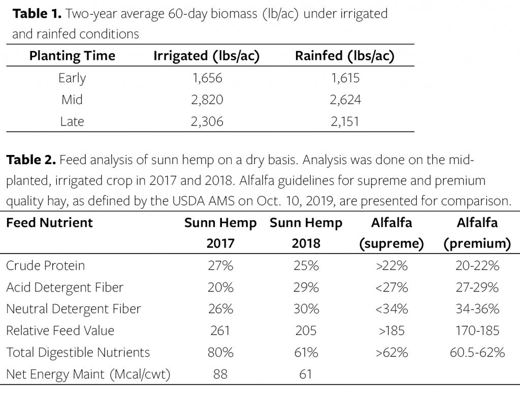 Table 1. Two-year average 60-day biomass (lb/ac) under irrigated and rainfed conditions. Table 2. Feed analysis of sunn hemp on a dry basis. Analysis was done on the mid-planted, irrigated crop in 2017 and 2018.