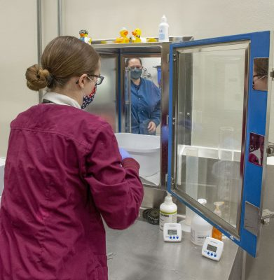 Two laboratory workers handle samples in the UW Biocontainment Facility